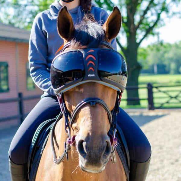 Austauschgläßer für eVysor Pferdebrille